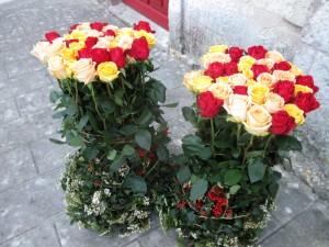 comp01 - Composition de roses, 1.50 € la rose