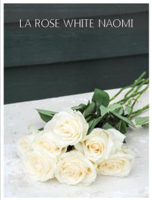 rose white naomi