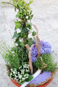 jard07 - Jardin de plantes à partir de 90 €